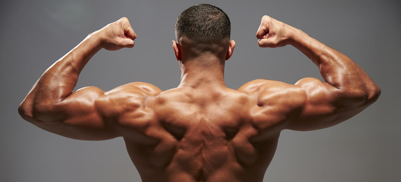 How to Get a Bigger & Wider Back With Weight Training